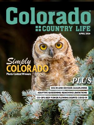 Colorado Country Life, April 2020. Simply Colorado Photo Content Winners. PLUS, Dig in and devour cauliflower. Adaptive Gardening: removing limitations. Co-ops keep power flowing despite Covid-19.