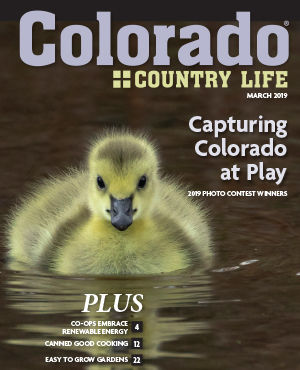 Colorado Country Life. March 2019. Capturing Colorado at Play. 2019 Photo Contest Winners. Plus: Co-Ops Embrace Renewable Energy (4), Canned Good Cooking (12), Easy to Grow Gardens (22)