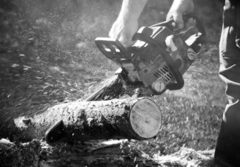 hands holding chainsaw cutting log
