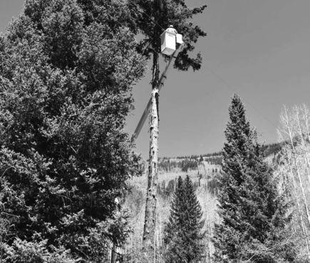 lineworker in bucket truck working on trees