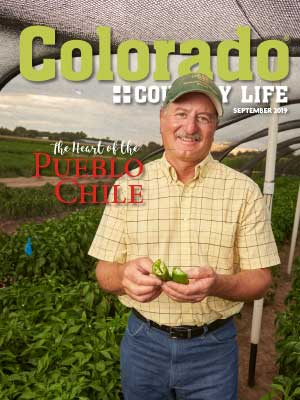 """Colorado Country Life September 2019. The Heart of the Pueblo Chili."" Man standing in field holding chili peppers."