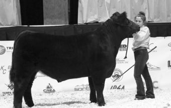 Emma Rusk with her second-place market steer.